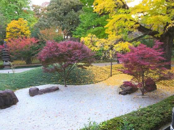 九品仏浄真寺 庭園 紅葉