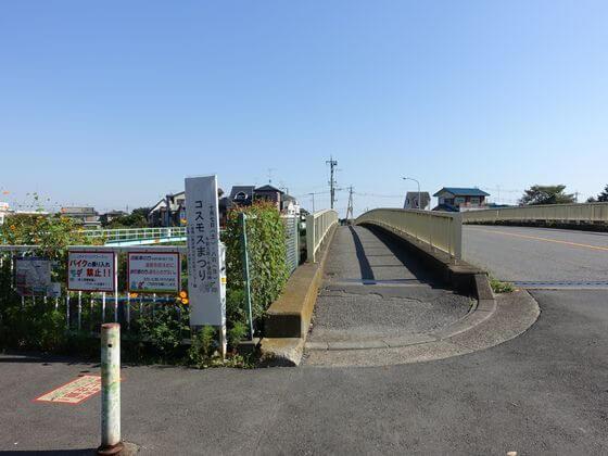 コスモスの咲く散歩道 木染橋