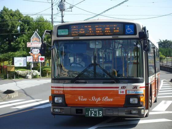 コスモスの咲く散歩道 バス