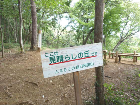 日和田山 見晴らしの丘