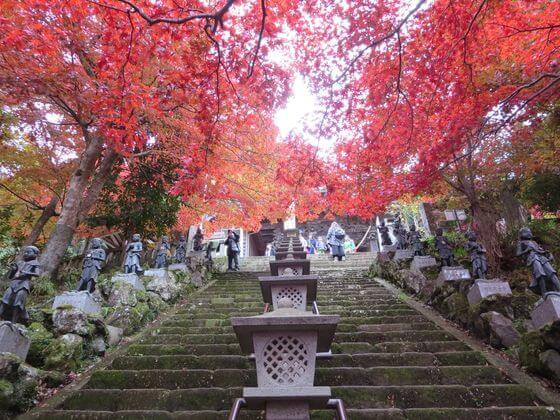 大山寺 参道