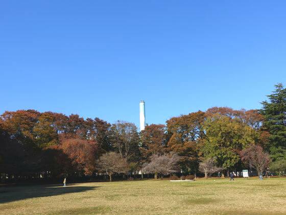 砧公園 煙突