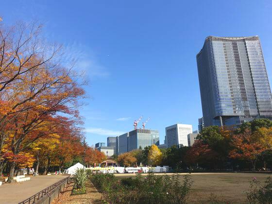 日比谷公園 にれの木 紅葉