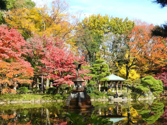 日比谷公園 紅葉 見どころ