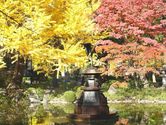 東京 日比谷公園 紅葉