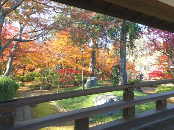 喜多院 紅葉山庭園