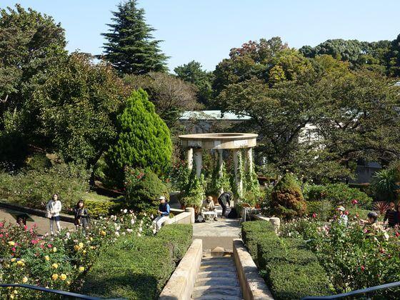港の見える丘公園 バラとカスケードの庭