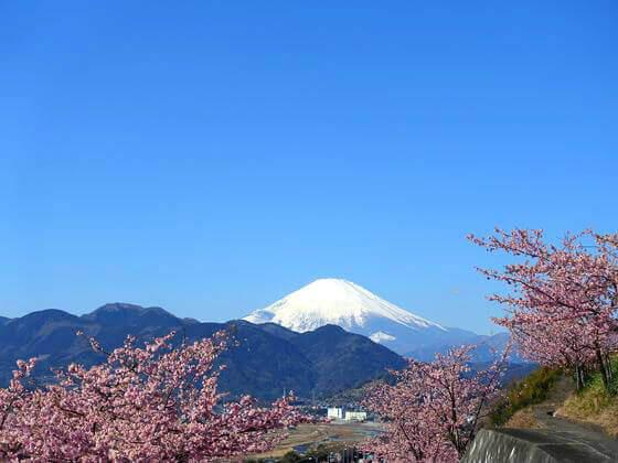 松田山 富士山
