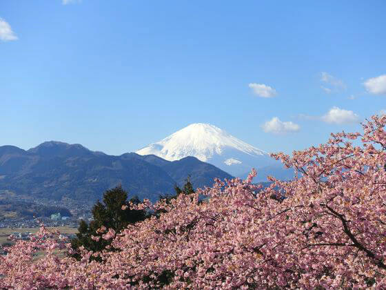 西平畑公園 富士山