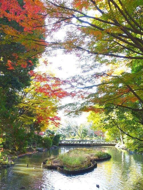 東京 有栖川公園 紅葉
