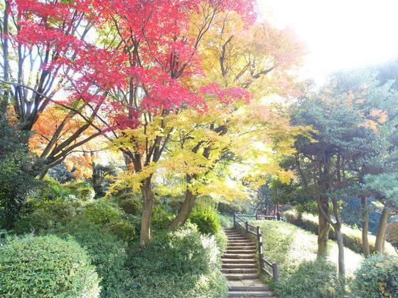 港区 有栖川公園 紅葉