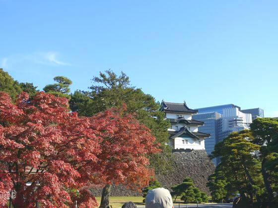 富士見櫓 紅葉