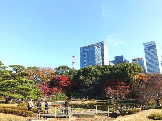 二の丸庭園 紅葉