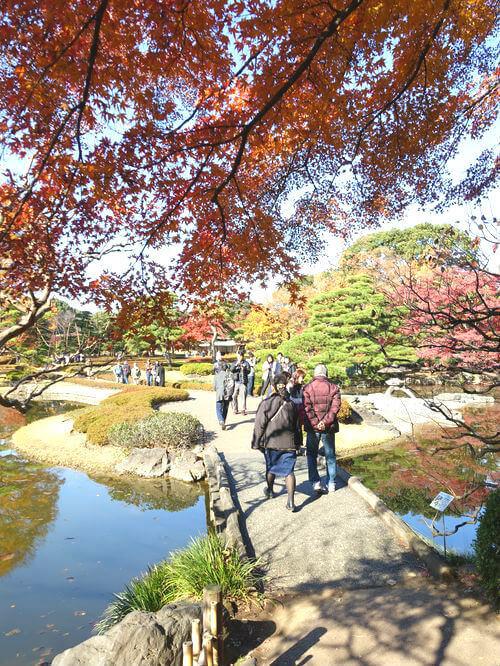 皇居東御苑 二の丸庭園 紅葉