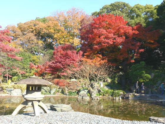 東御苑 二の丸庭園 紅葉