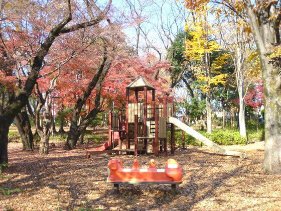 石神井公園 遊具ひろば 紅葉