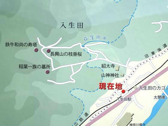 長興山しだれ桜 地図