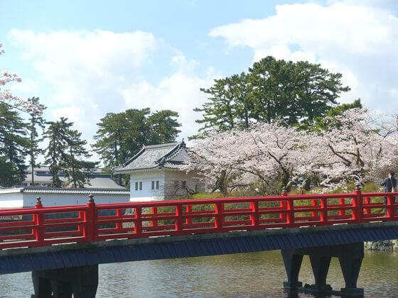 小田原城 隅櫓 桜