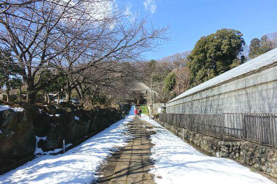 西方寺 参道