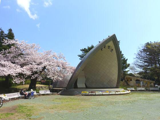 桜 平塚市総合公園