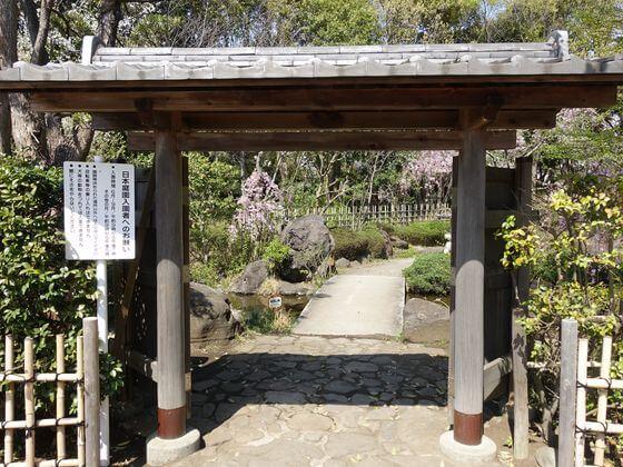 平塚市総合公園 日本庭園