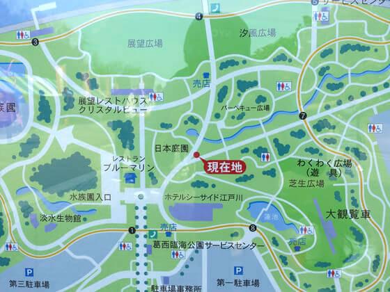 葛西臨海公園 桜 場所