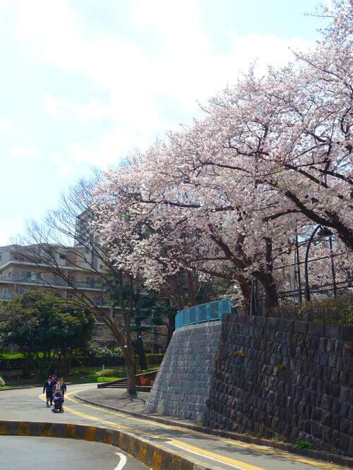 駒沢公園南口