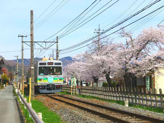 秩父 電車 桜