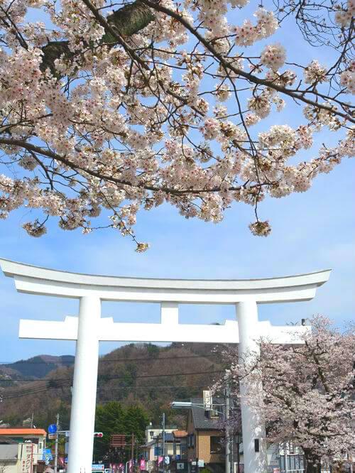 宝登山神社 参道 桜並木