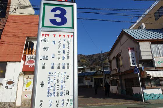 松田 ロウバイ アクセス