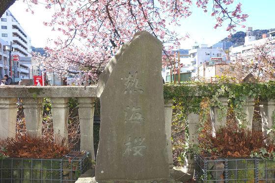 あたみ桜 石碑