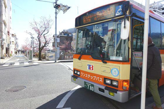 糸川桜まつり バス