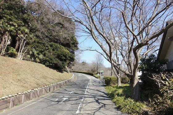 金沢自然公園 夏山口