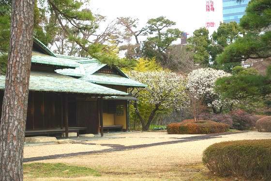 諏訪の茶屋 梅
