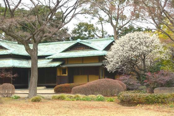 二の丸庭園 諏訪の茶屋 梅