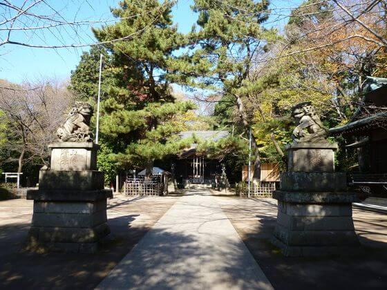 石神井氷川神社 境内