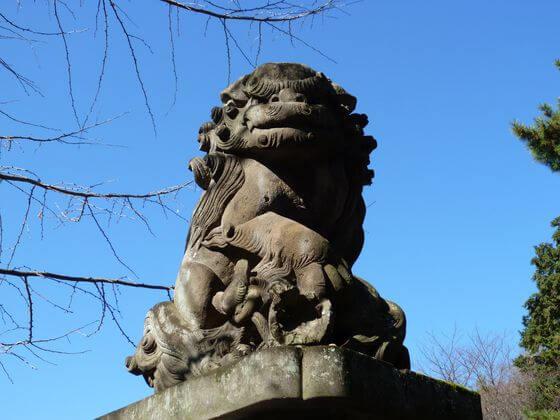 石神井氷川神社 狛犬