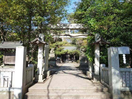 石神井氷川神社 鳥居