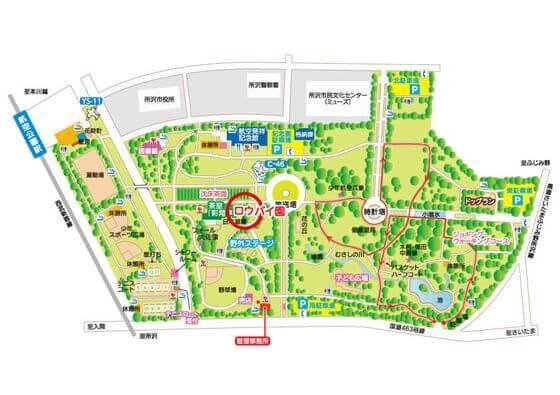 所沢航空公園 ロウバイ 場所