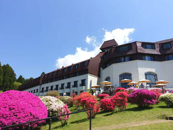 山のホテル ツツジ