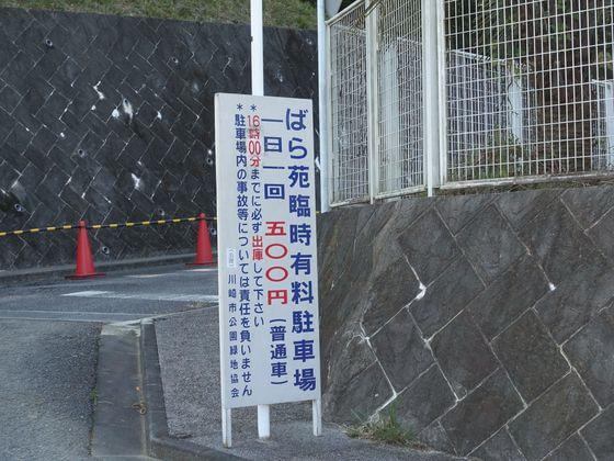 生田緑地 バラ苑 駐車場