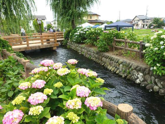 武永田水辺公園