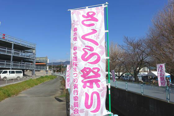 春木径幸せ道桜まつり