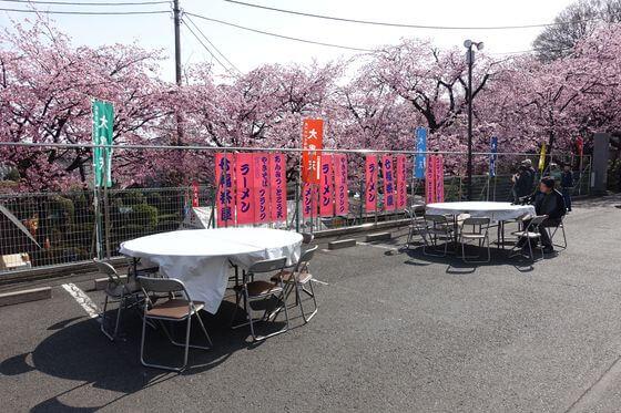 密蔵院 桜まつり