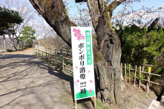 懐古園 桜祭り