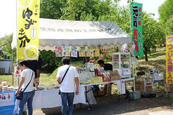 五大尊花木公園つつじ祭り
