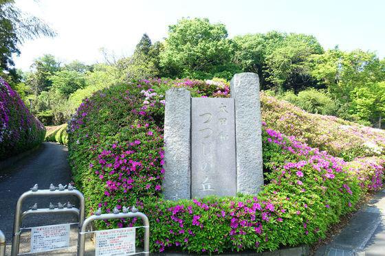 太田和つつじの丘 入口