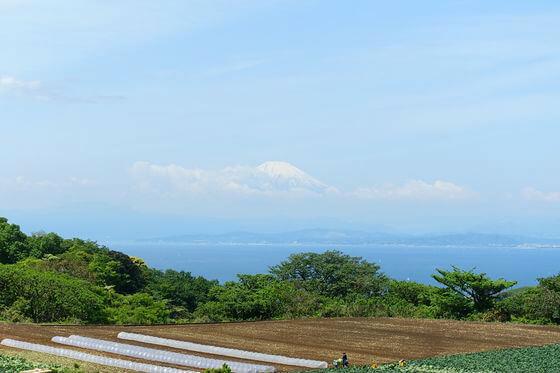 湘南国際村 富士山