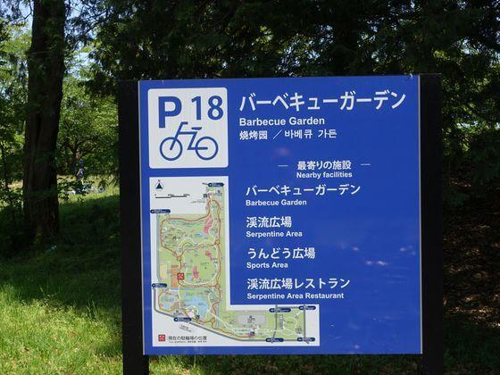 国営昭和記念公園 チューリップ 場所