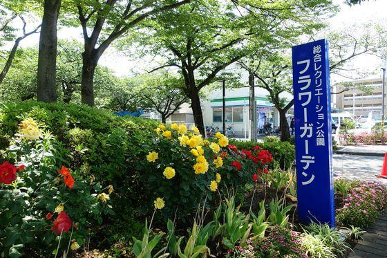 総合レクリエーション公園 フラワーガーデン
